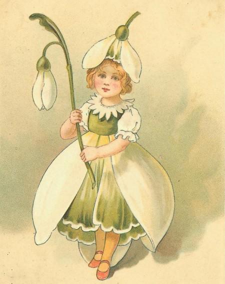 Gialloiperico come migliorare la propria vita con l for I fiori della balsamina